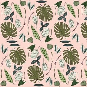 Conservatory // Papaya // by Sweet Melody Designs