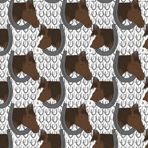 Horses in horseshoe portraits 3