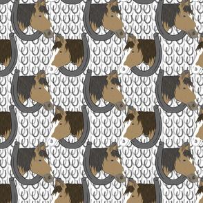 Horses in horseshoe portraits 5