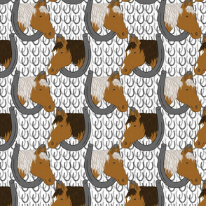 Horses in horseshoe portraits 8