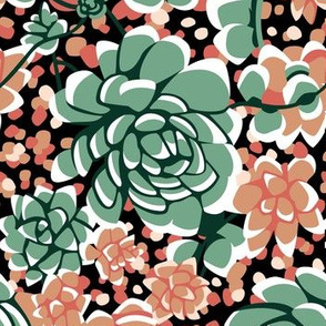 Succulents limited palette