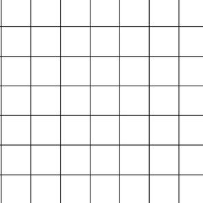 Large b/w Grid