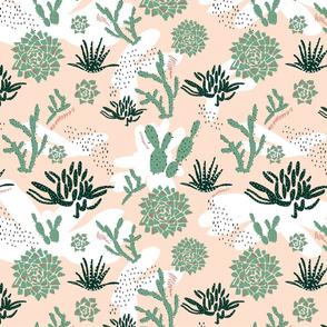 Abstract Succulent Garden