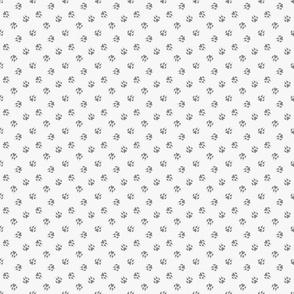 Tiny dog paw prints coordinate - gray