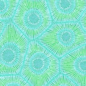coral pattern in aqua