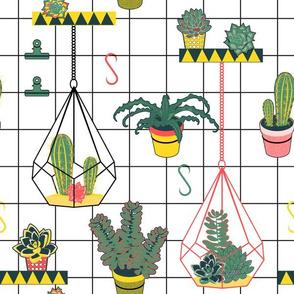 Modern Succulents (Palette 2)