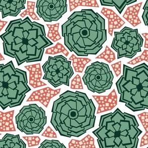 Geometric Succulents (Siesta)