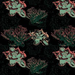 succulent  limited palette