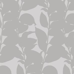 Wallflower Cluster