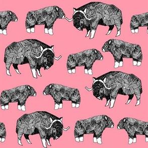 musk ox fabric // arctic animal fabric canada alaska greenland -  medium pink