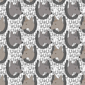 Xoloitzcuintli horseshoe portraits