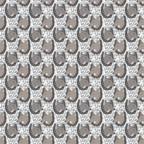 Small Xoloitzcuintli horseshoe portraits