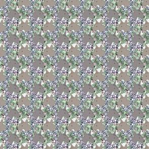 Small Floral Xoloitzcuintli portraits