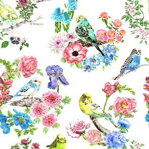 Watercolour Budgies and Blooms