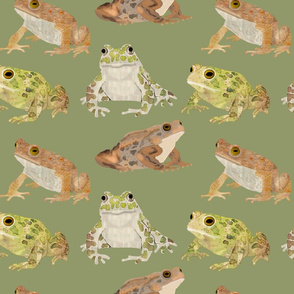 toadscatteredgreenbg