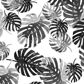 palm springs black and white