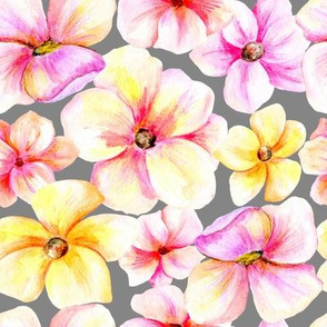 Pencil watercolor pink and yellow flowers