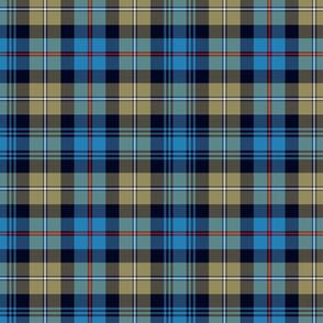 "Mackenzie / Seaforth Highlander tartan, 10"", muted colors"
