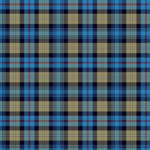"Mackenzie / Seaforth Highlander tartan, 7"", muted colors"