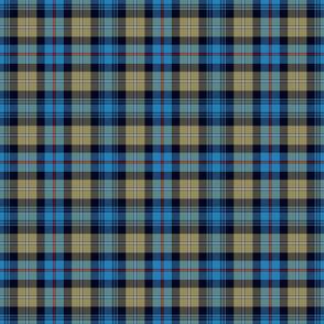 "Mackenzie / Seaforth Highlander tartan, 6"", muted colors"