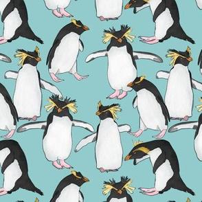 Rockhopper Penguins on Light Blue