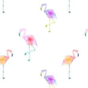 Indy Bloom Design Flamingos B
