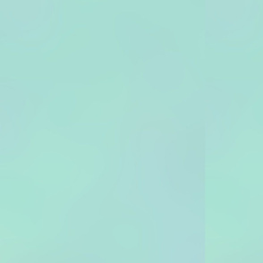 SOC-green-red-turk-light-bg.