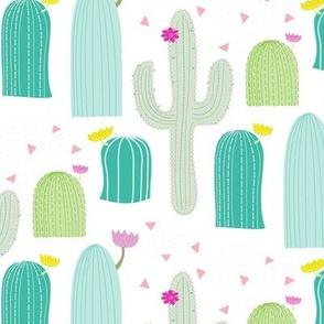 Southwest Cactus Field