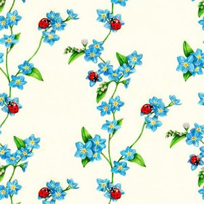 Forget Me Not, My Ladybird