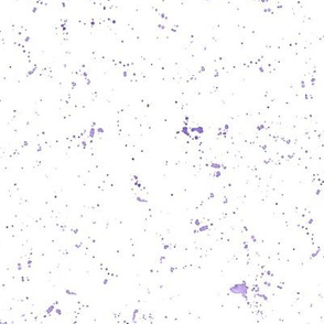 Purple Grunge Splatter Flecks Spots