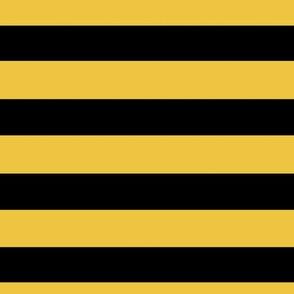Magic School Badger Wizard Stripes Big Gold and Black