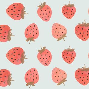 Mint Strawberry Coordinate