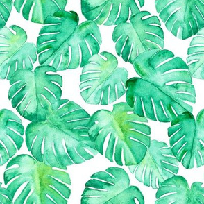 (small scale) watercolor monstera leaf