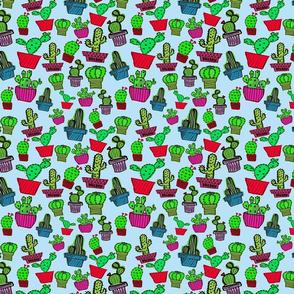 Cactus Plants-ch