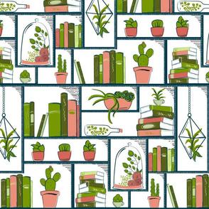 Succulents on a Modular Bookcase II