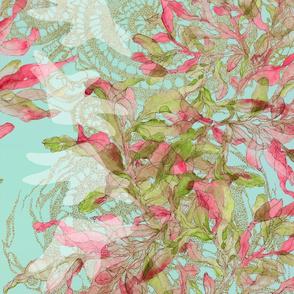 SOC-green-red-pale-turk-LM-seaerrd-starfish-B