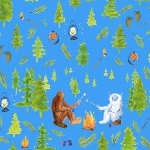 annual camping trip med polar blue