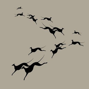 flying sighthounds, grey, black