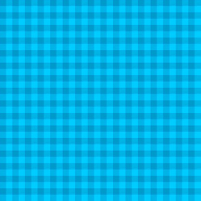 Bright turquoise gingham