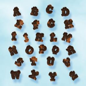Calico Fur Alphabet