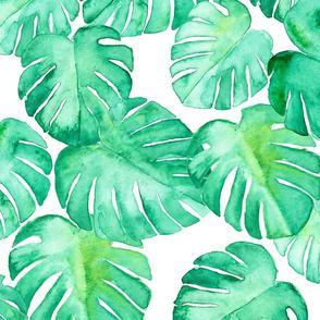 (jumbo scale) watercolor monstera leaf