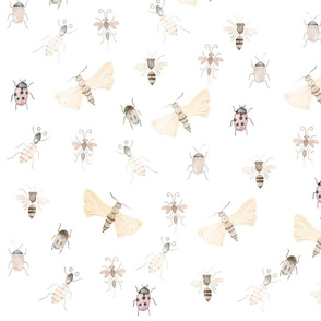Bugs and Insects pattern