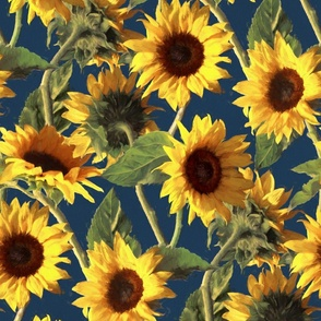 Sunflowers on Dark Blue
