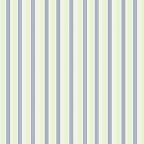 stripe-1