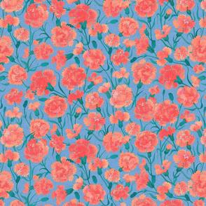 carnations 1