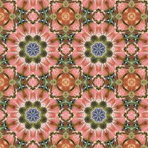 Peach Roses and Sea Holly 085