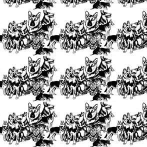 German Shepherd Black On white Collage