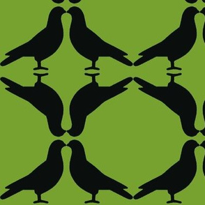 Pigeon Circles-BkGn