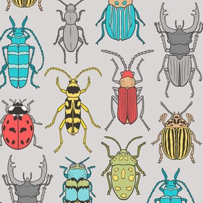 Beetles Insects Forest Bugs on Grey