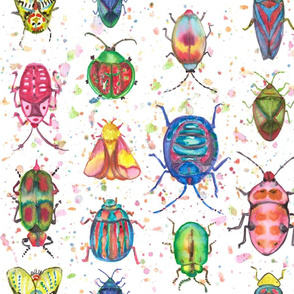Colorful Insects in Watercolors